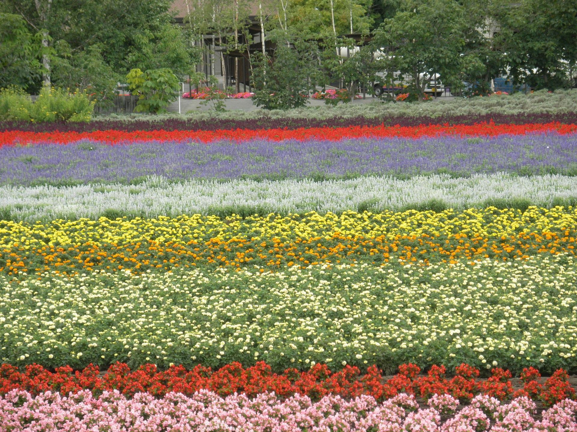 Hokkaido Region