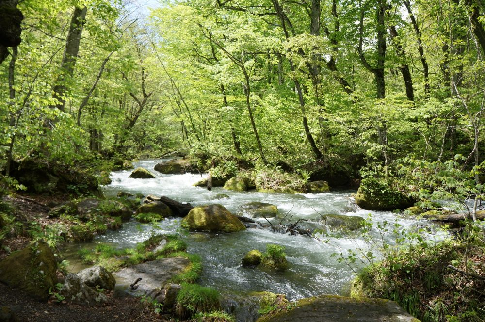 9 - Days Tour of great nature hiking in Tohoku