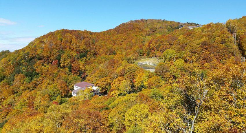 Shiga Kogen Autumn